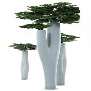 MISSED TREE, by SERRALUNGA